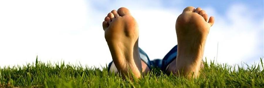 Интересные факты о ногах